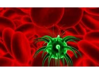 Медицинский препарат Фарморубицин